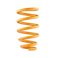 Front Constant Load Coil Spring - Land Rover Discovery Series 2
