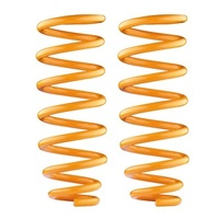 Rear Performance Coil Springs Ð Delica L400 1994 onwards